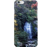 i Meigs Fall III iPhone Case/Skin