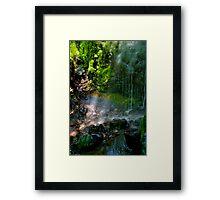 Malyon Fae Framed Print