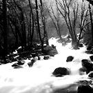 """Bridal Veil Creek"" Yosemite. by James Lady"