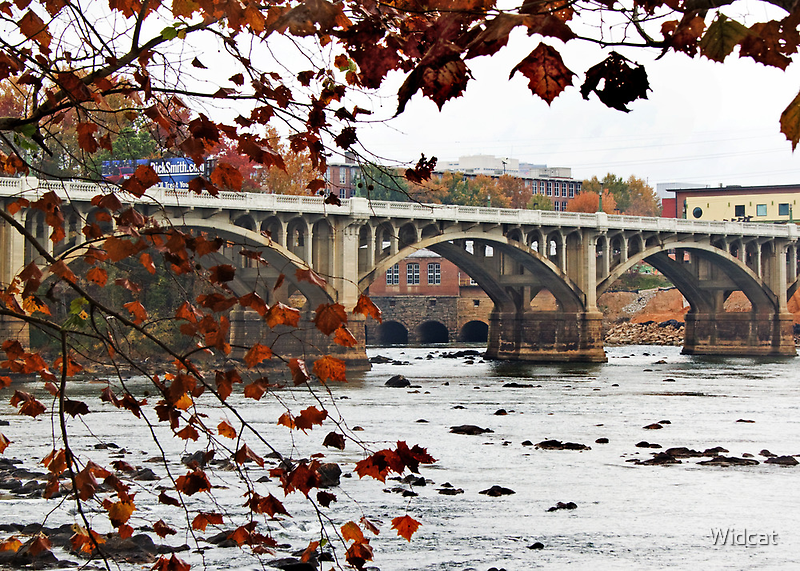 Columbia on the Congaree by Widcat