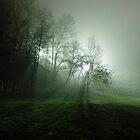 Mist by Rasevic