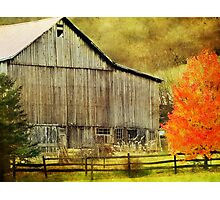 The Barn and the Tree Photographic Print