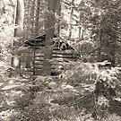 A little Cabin in the Woods by Diane  Kramer