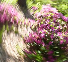 Spring spinner by keeganspera
