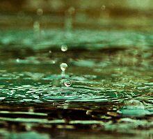 Drip Drip Drop-2 by ScaredylionFoto