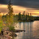 Autumn, Blachford Lake, NWT by Elisabeth van Eyken