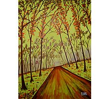 """""""Country Road Forest"""" Photographic Print"""