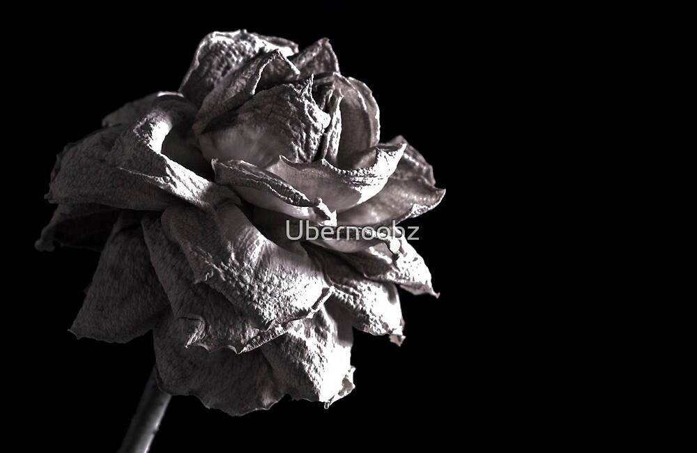 Monochrome Rose by Ubernoobz