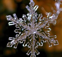 Snowflake Crystal Golden by Mowny