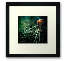 Deep down Framed Print