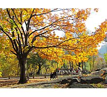 Autumn afternoon in Central Park, NYC Photographic Print