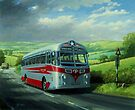 Silver Star Tiger coach by Mike Jeffries