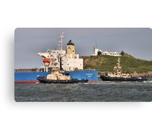 FORTUNE MIRACLE CARGO SHIP - Newcastle Harbour NSW Australia Canvas Print