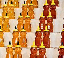 Honey Bear by ScaredylionFoto