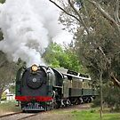621 Steaming through Mount Barker by LeeoPhotography