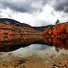 A Reflection of Fall Color - Basin Pond by T.J. Martin