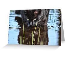 Slinky Reflection Greeting Card