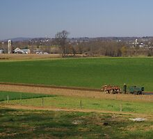 Lancaster county farm and farmer by purplefoxphoto