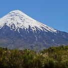 Osorno Volcano from Petrohue Village, Chilean Patagonia by Coreena Vieth