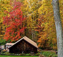 Strawberry Cabin 2 by Keenan