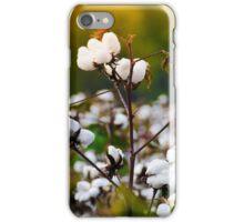Cotton Field iPhone Case/Skin
