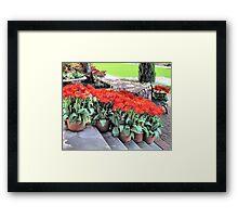 Red Blooms Framed Print
