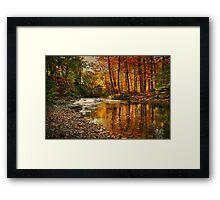 Fall Again Framed Print