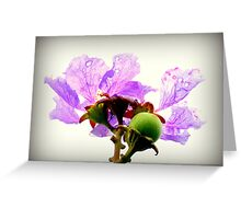 Green Busting into Lavendar Greeting Card