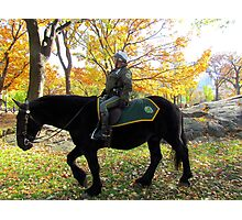 Central Park patrol, New York City  Photographic Print