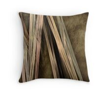 Absent Striations  Throw Pillow