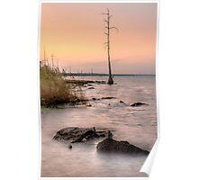 Sunset on Lake Pontchartrain Poster
