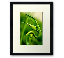 """One of His Mysterious Ways"" Framed Print"