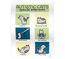 Autistic Cat's Special Interests Poster