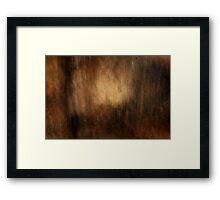 Umber Glow Framed Print