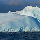 Iceberg &amp; Penguins, Antarctic Sound by Coreena Vieth