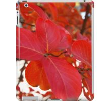 Red Leaves in Autumn 2 iPad Case/Skin
