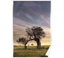 Dog Rocks - Batesford - Victoria Poster