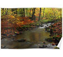 Autumnal Melancholy Poster