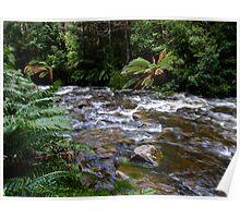 Tasmanian World Heritage area Poster