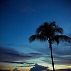 Island Fever-3 by ScaredylionFoto
