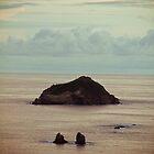 Island-2 by ScaredylionFoto