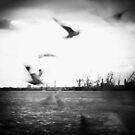 Fly away by smilyjay