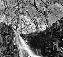 East Gill Force 01 - Nr Keld, Yorkshire Dales by ExclusivelyMono