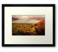 A Touch of Rose Framed Print