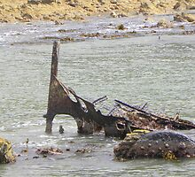 Ship wreck at Betty's Bay by Pieta Pieterse