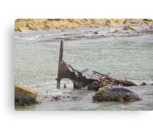 Ship wreck at Betty's Bay Canvas Print