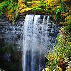 Tews Falls by Ticker