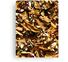 Leaves Galore Canvas Print