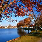 Autumn at Argyle Park by Holly Martinson