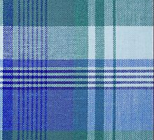 Blue Plaid iPhone Case by Alexandra Grant